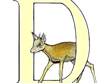 Dik-Dik - Alphabet Print - Unique Gift - Letter D - Name Gift