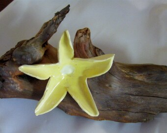 Ceramic Beach Flower on Driftwood