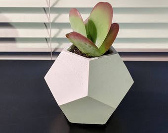 Plant Pot | Succulent Planter | Concrete Planter | Geometric Planter | Dodecahedron | Planter | Air Planter | Decorative Concrete | Concrete
