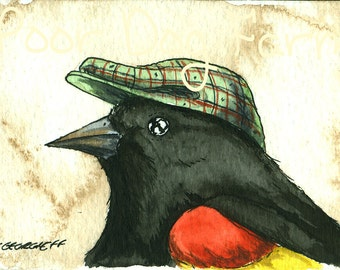 oh.. that I might die.... Red-winged Blackbird in a Hat