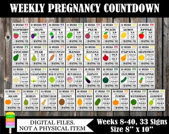 PRINTABLE Pregnancy Countdown Signs-Weekly Pregnancy Countdown-Pregnancy Photo Prop-Countdown To Baby-Baby Size Signs-33 Signs/Size 8x10