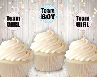 Gender Reveal, Cupcake Toppers, Team Girl, Team Boy, Pink, Blue, Food Picks, Set of 12 CT050
