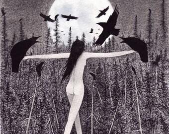 Sophia PROVISION print
