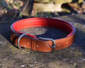 Padded Leather Dog Collar - size L