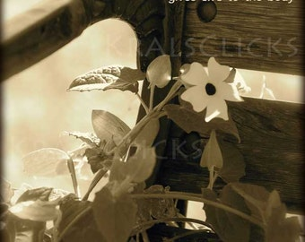 Fine Art Photography Heart at peace gives life to the body photograph black white sepia gift idea Bedroom Home Office Wall Decor FlowerBench