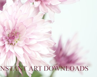 White and Pink Flowers Instant Art Downloads Downloadable Printable Print Stock Photography Digital Downloads Oversized Large Files Art