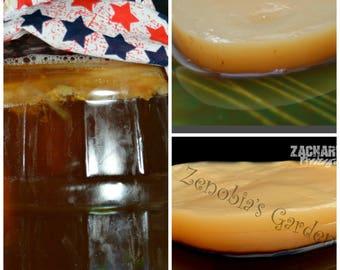 48 Ounces of Kombucha Starter Tea Plus 1 Kombucha Scoby