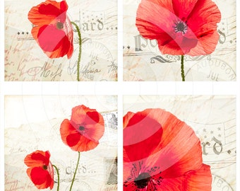 Poppies digital collage sheet 4x4 inch tiles instant download and printable for art and craft, scrapbooking, coasters and more