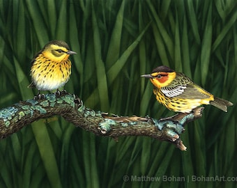 ORIGINAL Watercolor Painting of Cape May Warblers, Bird Painting Bird Art, Wall Art Home Decor, Wildlife Nature, Spring Green, FREE SHIPPING