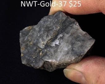 Natural GOLD in grey Quartz from Arctic, Canada