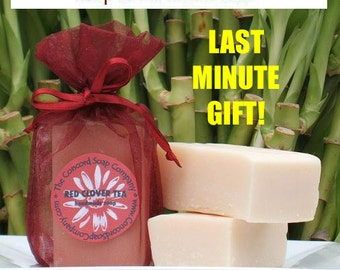 Handmade Soap-of-the-Month Club 6 Month DOUBLE YOUR FUN Subscription - soap club, monthly, membership, last minute gift, assorted scents