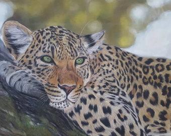 leopard art pastel drawing/painting original framed