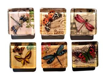 Butterfly Butterflies Dragonfly Fridge Magnets - Glass Magnets - Set of 6 Magnet Sets - Perfect Hostess, Housewarming Gift - Home Decor