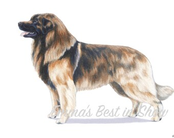 Leonberger Dog - Archival Fine Art Print - AKC Best in Show Champion - Breed Standard - Working Group - Original Art Print