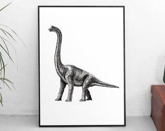 Diplodocus Print
