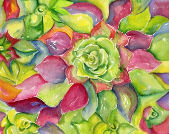 Succulent Original Watercolor Painting, 8 x 10 Pinks, red, greens and purples, watercolor painting of succulents, succulent wall art