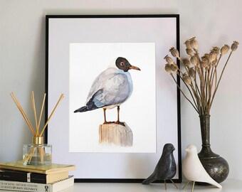Shorline Gull Watercolour Print, 5x7 or 8x10