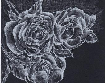 Illustration of big peony blossoms (Original)