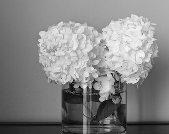 Hydrangea Art, Black and White Photography Still Life Print,Fine Art Photography,White Flower Print,Black & White Print,Hydrangea Flower Art