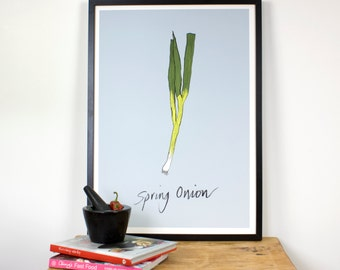 High Quality Spring Onion kitchen wall print - Giclee print