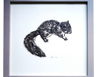 Squirrel Illustration Print - 30 x 30cm