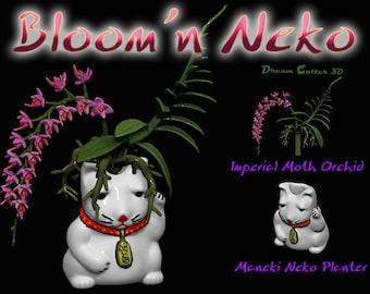 Bloom'n Neko