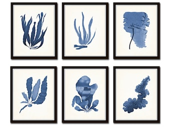 Blue Seaweed Print Set No. 25, Art Print, Giclee, Wall Art, Botanical Art, Print Sets, Coastal Decor, Beach House Art, Nature Art