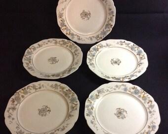 Haviland Limoges Plates Set Of 5