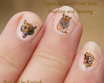 Tijger Nail Art, grote kat Nail Art Stickers, Tiger vingernagel stickers, ontspannend, grommen, brullen, geeuwen tijgers, vinger nail art stickers