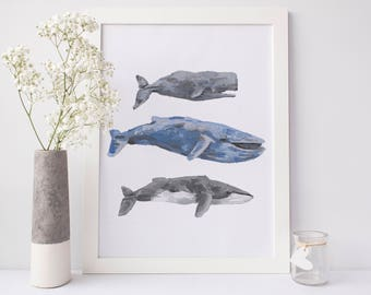 Whale Wall Art, Whale Prints, Digital Print, Instant Download, Nautical Print, Blue Whale Art Print, Whale Decor, Best Selling Items, Poster