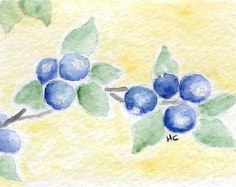 Original Watercolor ACEO Art Card, Blueberries, Summer Fruit