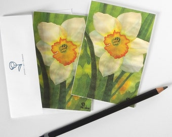 daffodil cards, flower card set, white daffodils invitation, botanical note cards, flower stationery
