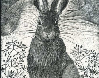 Hare in the grass Fine Art Print from Scraperboard Original
