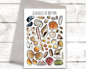 Seashells of Britain Greeting Card, Shells poster, coastal card, Seaside print, Nursery, Wildlife Print, Shells Illustration, art, WPC02