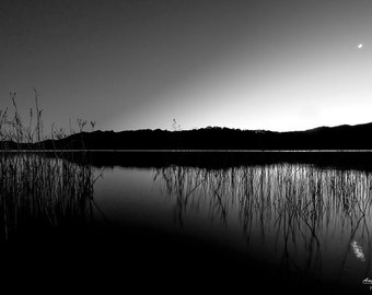 Black and White, Moonlight photography, Reflections on water, night photography, blue,  peaceful wall art, metal, fine art photography print