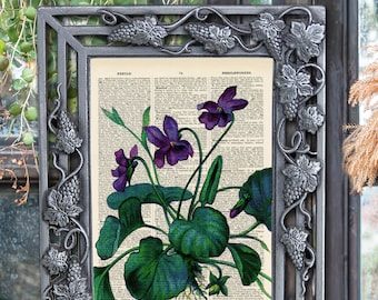 Violets Botanical print - Upcycled vintage image printed on a late 1800s Dictionary page Buy 3 get 1 FREE