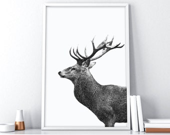 Printable Deer Head   Scandinavian Print   Nordic Wall Decor   Tumblr Room Decor   Deer Antler Decor   Minimalist Poster   Printable Art