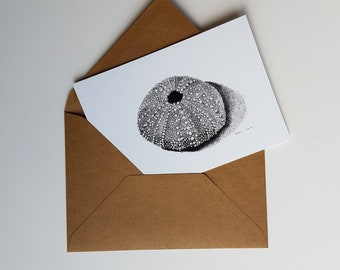 Sea urchin shell, print of a pen and inkdrawing, double card with envelope