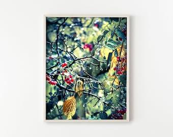 "printable art, printable wall art, botanical wall art, botanical prints, nature photography, instant download, digital art - ""Drip Drop"""