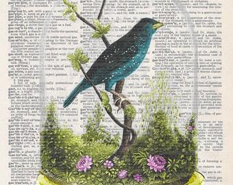 Bird Under Glass