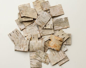 30 Natural Birch Bark Sheets Birch Bark Craft Birch Wood Sheets Birch Bark  Sheets Straps Strips