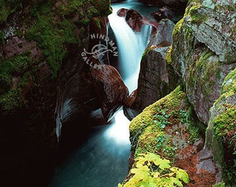 Avalanche Creek - Glacier NP