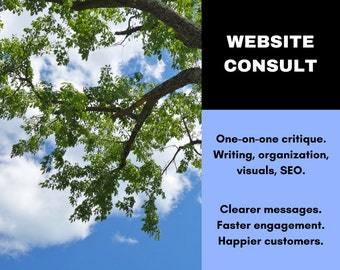 Website Consultation - On-on-one Website Critique - Website Review - Writing Service - Website SEO Copywriting Service - Ask for 50% Off!