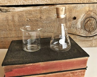 Small Pyrex beakers. Science beakers test tubes. Glass measuring dish.