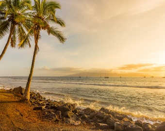 Palm Tree Sunset on Beach Surf Photography Decor Print, Ocean, Hawaii, Maui, Oahu, Kauai, Tropical, Hawaiian Island, California, Florida