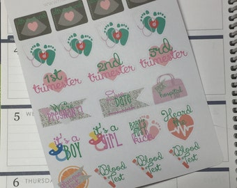 Pregnancy Stickers Baby Planning Stickers for Erin Condren Life Planner Plum Paper Planner Pregnant Stickers