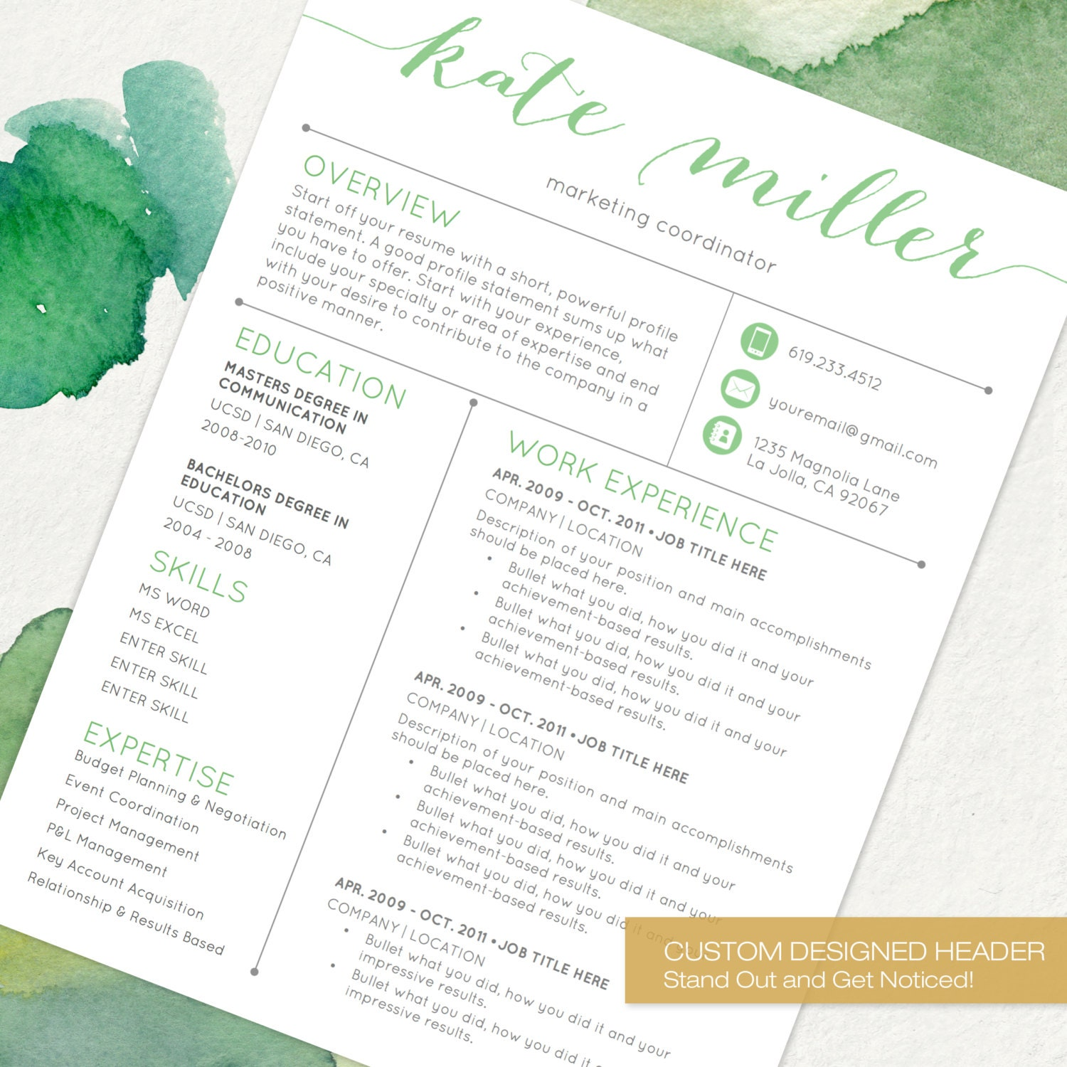 zoom - Resume Template With Picture Insert