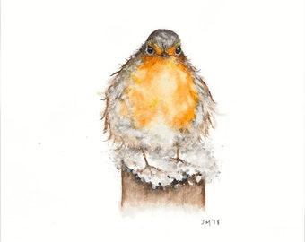 Snowy Robin - Sketch - Giclée Print