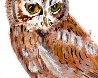 Owl ACEO in  watercolor.  Original ACEO watercolor painting artist trading card.  Screech owl aceo art