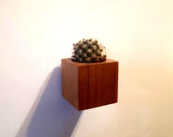 "Mini cactus 1.5 ""- Minibloks fridge magnets - No.0.13"